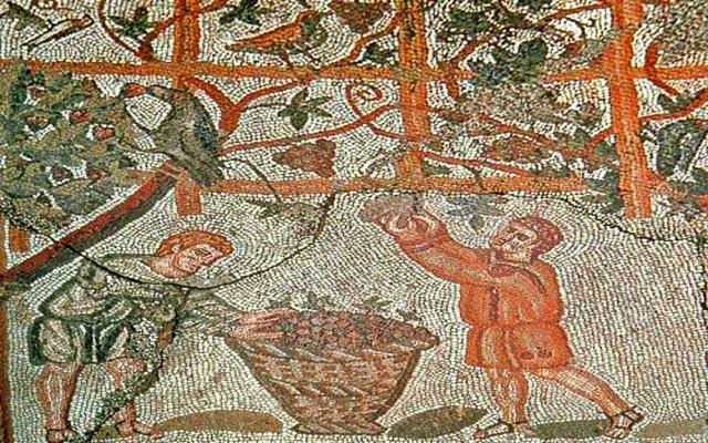 Сельскохозяйственное виноделие в Древнем Риме
