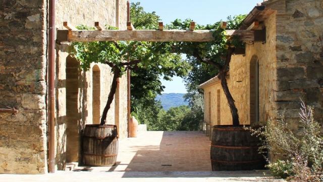 Виноградная терраса